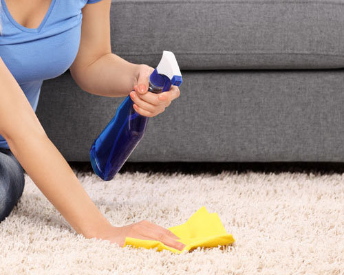 Carpet Cleaning Carson City Nv Rug Upholstery Furniture