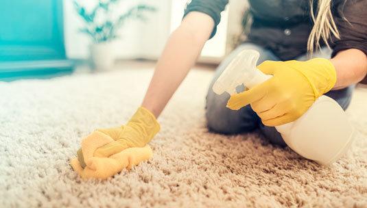 Carpet Deodorization & Sanitation
