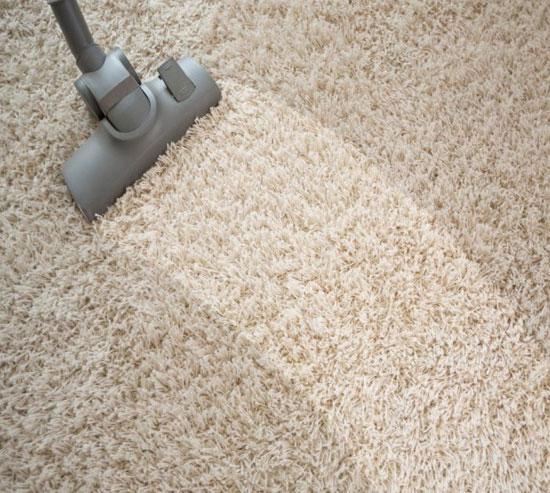 Carpet cleaning reno
